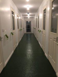 cattery-corridor